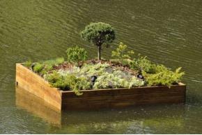«Сады на воде» в Белгороде
