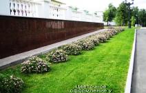 Цветник у здания администрации Президента УР (2009).